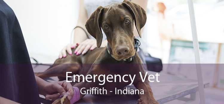 Emergency Vet Griffith - Indiana