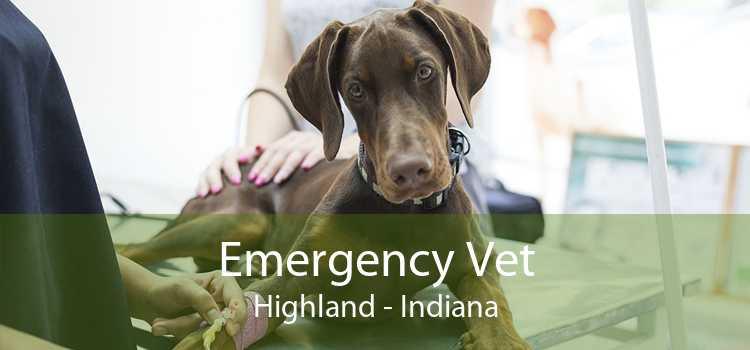 Emergency Vet Highland - Indiana