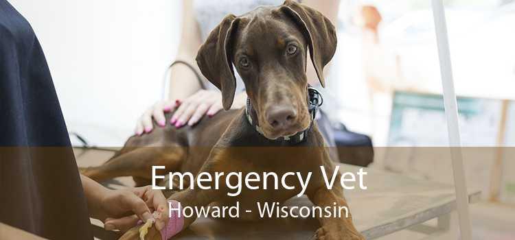 Emergency Vet Howard - Wisconsin