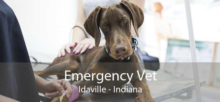 Emergency Vet Idaville - Indiana