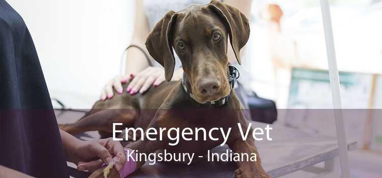 Emergency Vet Kingsbury - Indiana