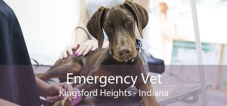 Emergency Vet Kingsford Heights - Indiana