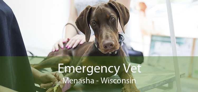 Emergency Vet Menasha - Wisconsin