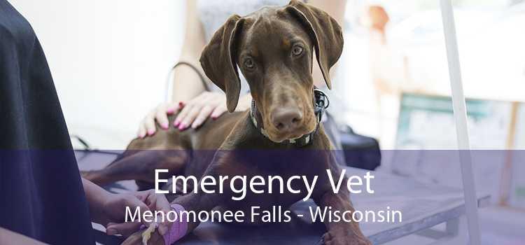 Emergency Vet Menomonee Falls - Wisconsin