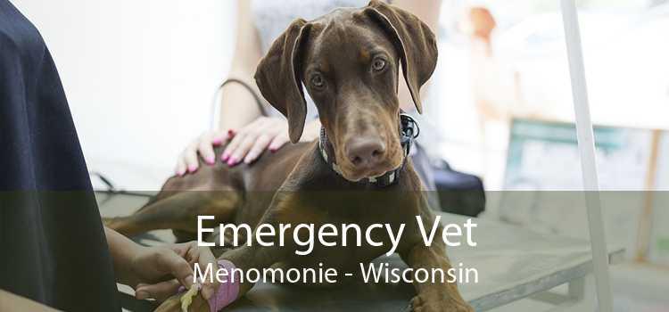 Emergency Vet Menomonie - Wisconsin
