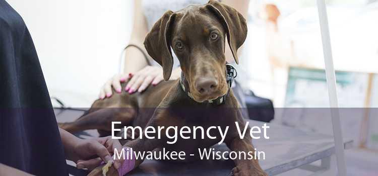 Emergency Vet Milwaukee - Wisconsin