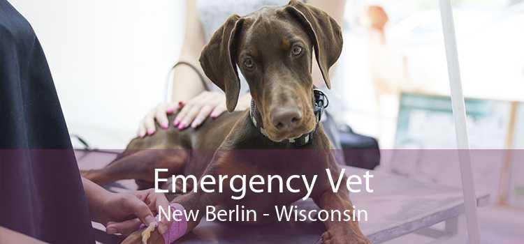 Emergency Vet New Berlin - Wisconsin