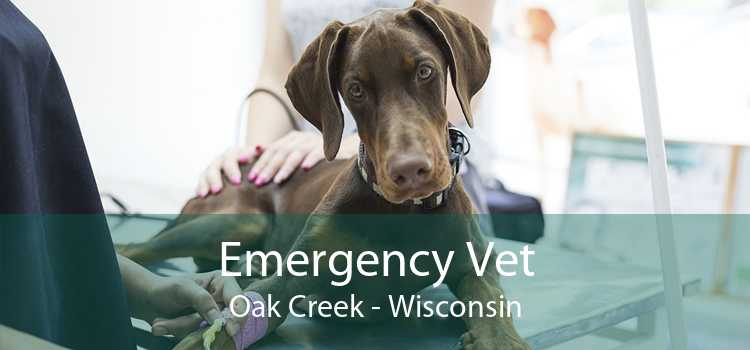 Emergency Vet Oak Creek - Wisconsin