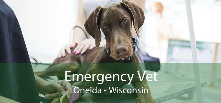 Emergency Vet Oneida - Wisconsin