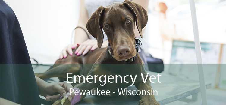 Emergency Vet Pewaukee - Wisconsin