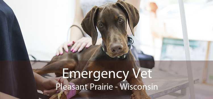 Emergency Vet Pleasant Prairie - Wisconsin