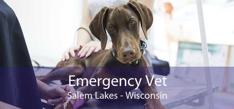 Emergency Vet Salem Lakes - Wisconsin