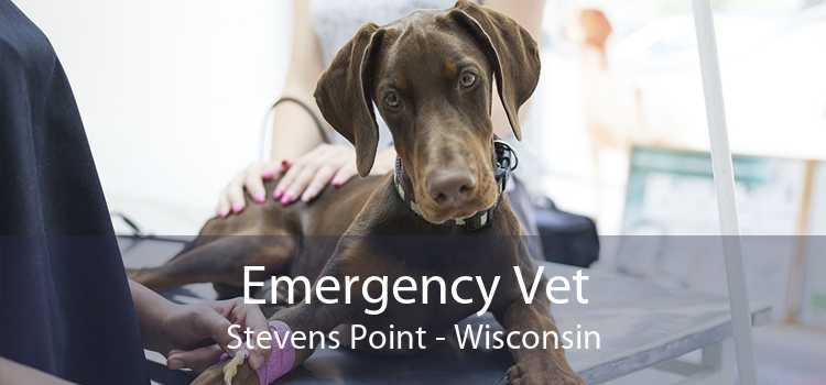 Emergency Vet Stevens Point - Wisconsin