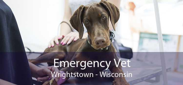Emergency Vet Wrightstown - Wisconsin