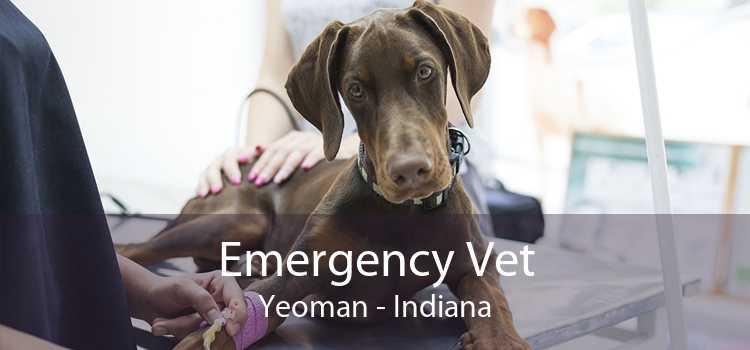 Emergency Vet Yeoman - Indiana