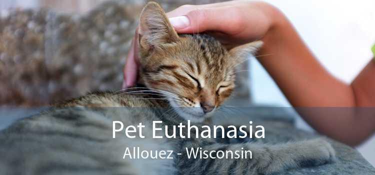 Pet Euthanasia Allouez - Wisconsin
