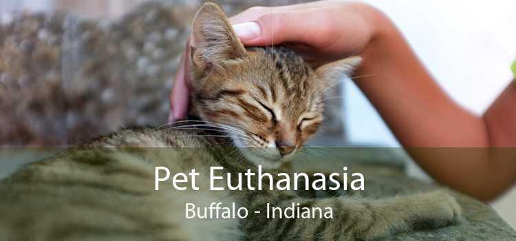 Pet Euthanasia Buffalo - Indiana