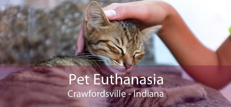 Pet Euthanasia Crawfordsville - Indiana