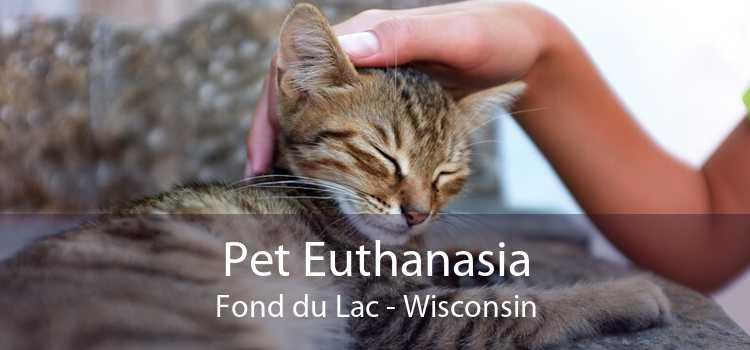 Pet Euthanasia Fond du Lac - Wisconsin