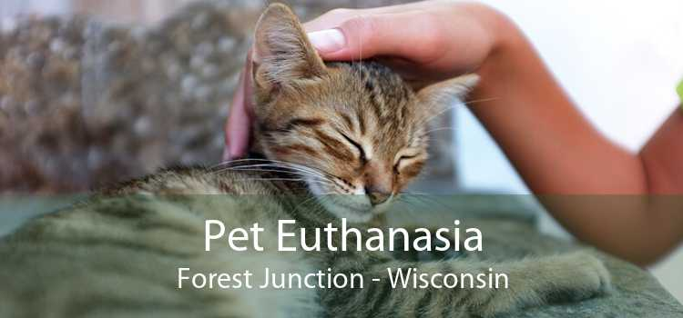 Pet Euthanasia Forest Junction - Wisconsin