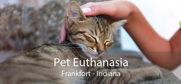 Pet Euthanasia Frankfort - Indiana