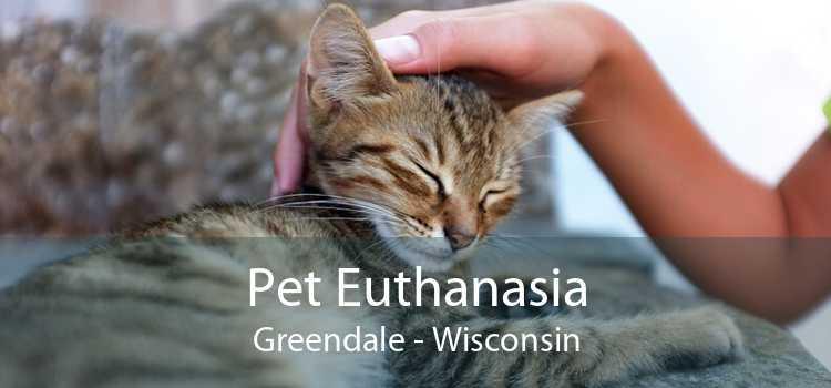 Pet Euthanasia Greendale - Wisconsin