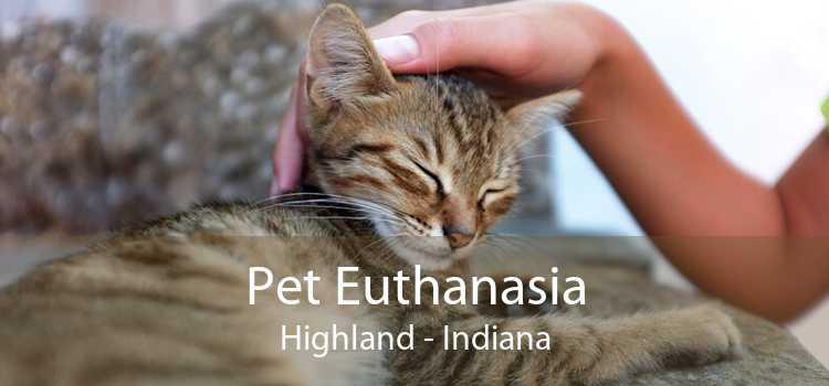 Pet Euthanasia Highland - Indiana