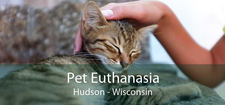 Pet Euthanasia Hudson - Wisconsin