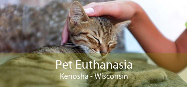 Pet Euthanasia Kenosha - Wisconsin