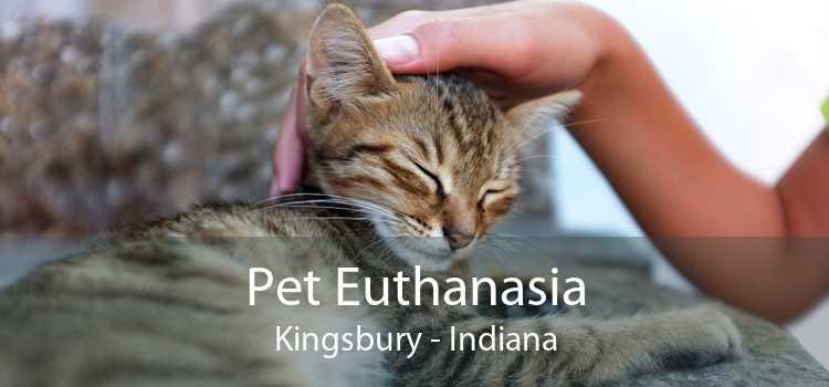 Pet Euthanasia Kingsbury - Indiana