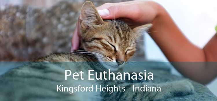 Pet Euthanasia Kingsford Heights - Indiana