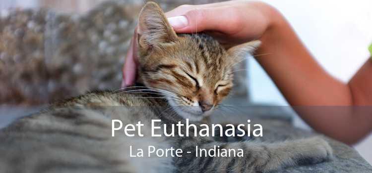 Pet Euthanasia La Porte - Indiana
