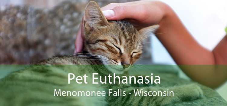 Pet Euthanasia Menomonee Falls - Wisconsin
