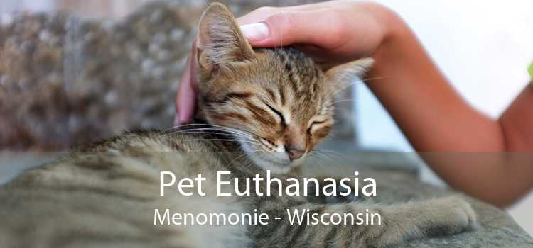 Pet Euthanasia Menomonie - Wisconsin