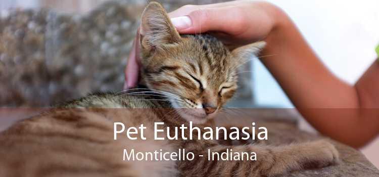Pet Euthanasia Monticello - Indiana