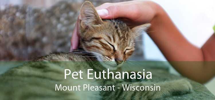 Pet Euthanasia Mount Pleasant - Wisconsin
