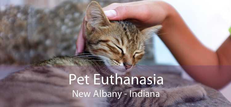 Pet Euthanasia New Albany - Indiana