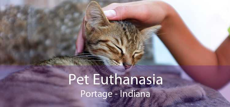 Pet Euthanasia Portage - Indiana