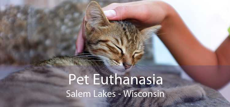 Pet Euthanasia Salem Lakes - Wisconsin