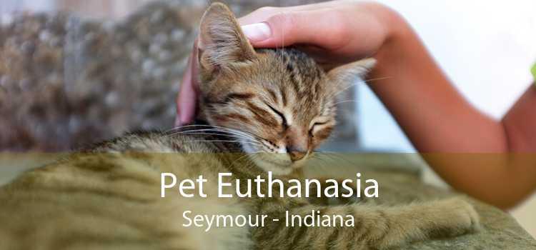 Pet Euthanasia Seymour - Indiana
