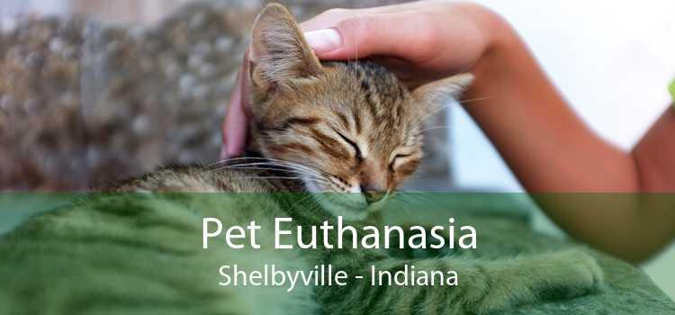 Pet Euthanasia Shelbyville - Indiana