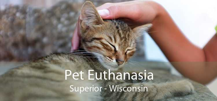 Pet Euthanasia Superior - Wisconsin