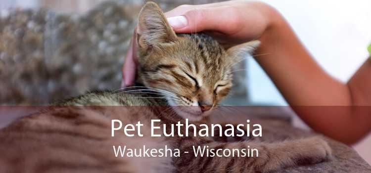 Pet Euthanasia Waukesha - Wisconsin