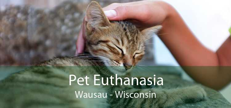 Pet Euthanasia Wausau - Wisconsin