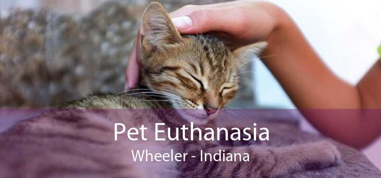Pet Euthanasia Wheeler - Indiana