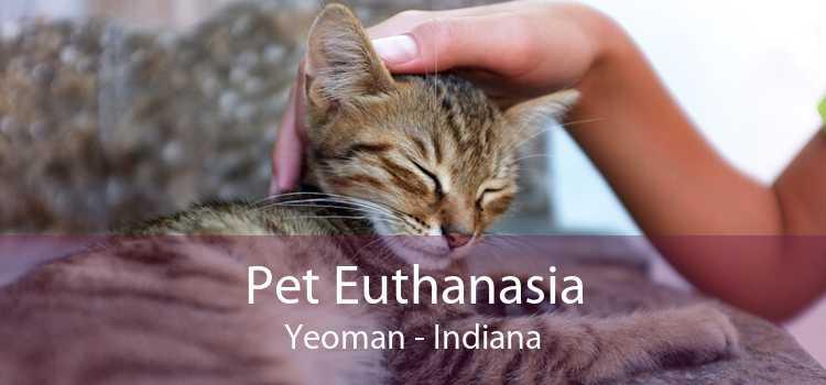 Pet Euthanasia Yeoman - Indiana