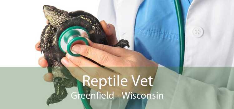 Reptile Vet Greenfield - Wisconsin