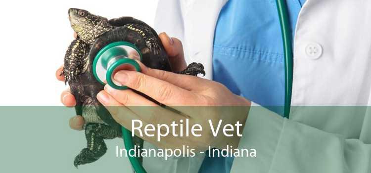 Reptile Vet Indianapolis - Indiana