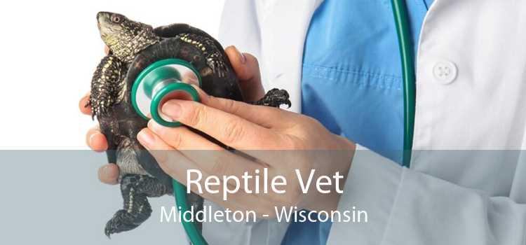 Reptile Vet Middleton - Wisconsin