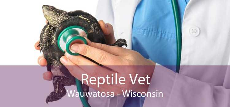 Reptile Vet Wauwatosa - Wisconsin